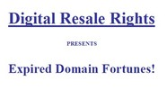 Expired Domains Fortune
